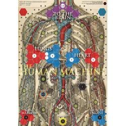 Corps Humain / Synapses