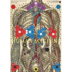Human Body / Synapses